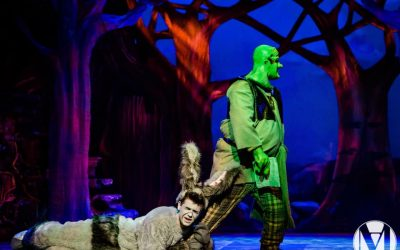 Shrek The Musical was a Huge Success!